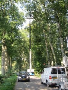 IMG_7598 onderhoud laanbomen